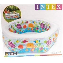 INTEX 56493