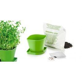 TESCOMA souprava pro pěstování bylinek SENSE, tymián
