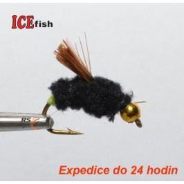 Ice Fish 22
