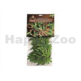 Terarijní rostlina KARLIE-FLAMINGO Abutilon 50cm (DOPRODEJ)