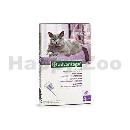 ADVANTAGE 80 pro velké kočky a králíky Spot-on 4x0,8ml
