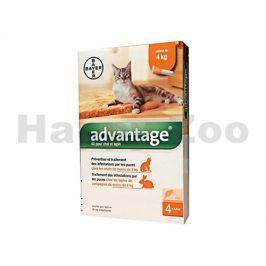 ADVANTAGE 40 pro malé kočky a králíky Spot-on 4x0,4ml