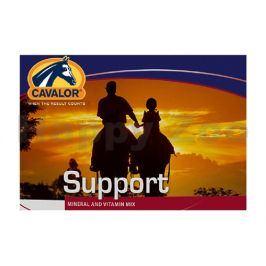CAVALOR Support - vitamíny a minerály pro rekreační ježdění 20kg