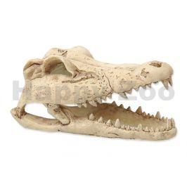 Dekorace REPTI PLANET krokodýlí lebka 13,8cm