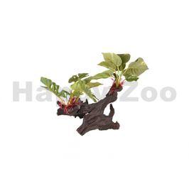 Akvarijní dekorace FLAMINGO - Tropica kořen s rostlinou 30x21x28