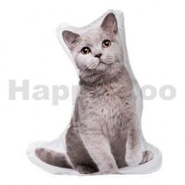 Polštář ANDARO 3D Pets - British Shorthair (M) 42cm