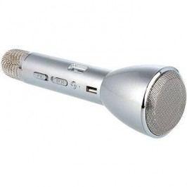 Eljet Karaoke Mikrofon Basic stříbrný