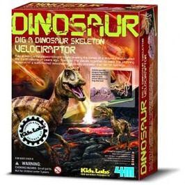 Dinosauří kostra - velociraptor