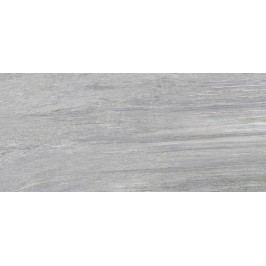 Dlažba Fineza Dblizzard tmavě šedá 30x60 cm, mat, rektifikovaná GT632401R