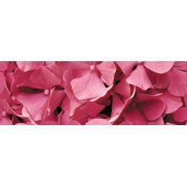 Dekor Ceracasa Velvet růžová Flowers 25x73 cm, lesk DFLOWERS1