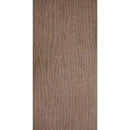 Dekor Rako Defile béžová 30x60 cm, mat, rektifikovaná DDRSE362.1