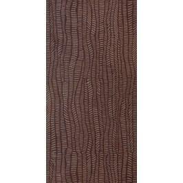 Dekor Rako Defile hnědá 30x60 cm, mat, rektifikovaná DDRSE361.1